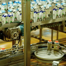 The Milk System: un'immagine tratta dal documentario