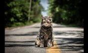 Pet Sematary - Trailer Italiano