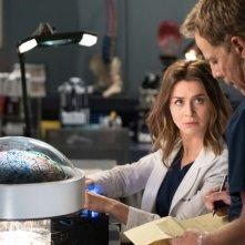 Grey's Anatomy: una foto della quindicesima stagione