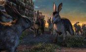 La collina dei conigli: le prime foto dell'adattamento televisivo