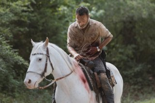 Twd 905 Jld 0621 04790 Rt