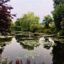 Le ninfee di Monet - Un incantesimo di acqua e luce: un momento del documentario