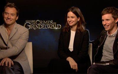 Un bacio tra Grindelwald e Silente in Animali Fantastici? Jude Law lo farebbe ad una condizione