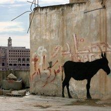L'uomo che rubò Banksy: un'immagine del documentario di Marco Proserpio