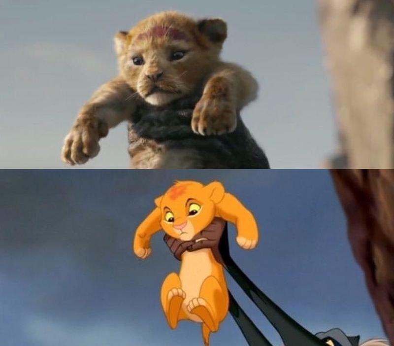 Il re leone: le scene del cartoon e del film 2019 a confronto in un
