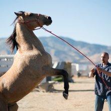 Mustang: Matthias Schoenaerts in una foto del film