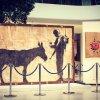 """L'uomo che rubò Banksy: Marco Proserpio, """"Con Banksy vi racconto la Palestina"""""""