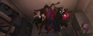 Spider Man Un Nuovo Universo 1
