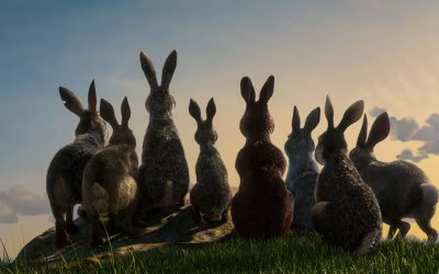 Recensione La collina dei conigli: su Netflix, scontro fra roditori in CGI