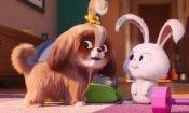 Pets 2: il nuovo trailer introduce la simpatica Daisy