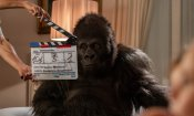 Recensione di Attenti al gorilla: un gorilla ci salverà