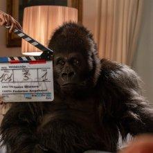 Attenti al gorilla: un momento sul set del film
