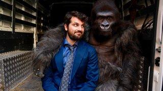 Attenti Al Gorilla 5