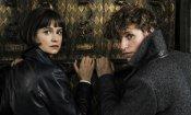 Animali fantastici 2 sarà il primo film in homevideo con traccia italiana in Dolby Atmos
