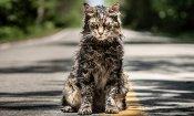 Pet Sematary, Stephen King avverte gli spettatori dell'horror!
