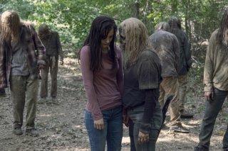 The Walking Dead Stagione 9 Il Guardiano 4