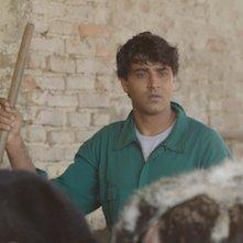 Il Vegetariano: una scena del film