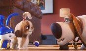 Pets 2: in arrivo un'attrazione ispirata al film agli Universal Studios Hollywood