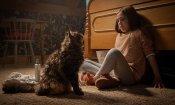 Pet Sematary: al Cinemino di Milano l'anteprima con gatto il 7 maggio