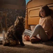 Pet Sematary: Jeté Laurence durante una scena