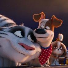 Pets 2 - Vita da Animali: un'immagine del film