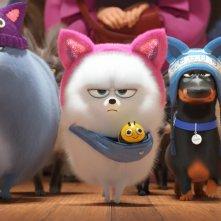 Pets 2 - Vita da Animali: una scena del film