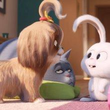 Pets 2 - Vita da Animali: una sequenza del film