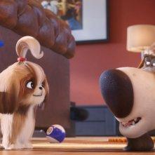 Pets 2 - Vita da Animali: un'immagine del film animato