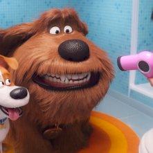 Pets 2 - Vita da Animali: una scena del film d'animazione