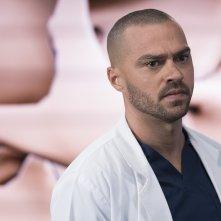 Grey's Anatomy: una scena con Jesse Williams
