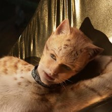 Taylor Swift in una scena del film Cats