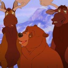 Koda, fratello orso: una scena del film