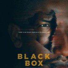 Locandina di Black Box