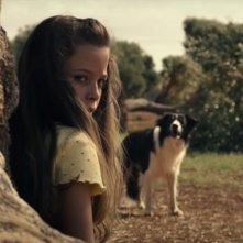 Il legame: una scena del film con Giulia Patrignani