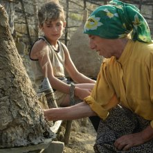 Honeyland: una foto del film