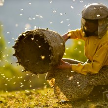 Honeyland: un'immagine del film