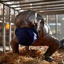 Jurassic World: Dominion, la foto di un baby dinosauro con la mascherina
