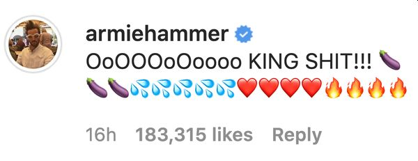 Armie Hammer Commento