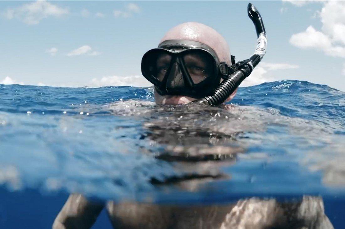 Seaspiracy Esiste La Pesca Sostenibile 1